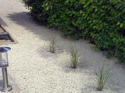 záhrada počas realizácie